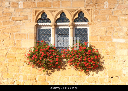 Geraniums in window boxes at the Tourist Information Office in the village of Domme, Aquitaine, France. - Stock Photo
