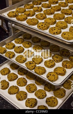 Gluten-free cookies arrayed on baking trays - Stock Photo