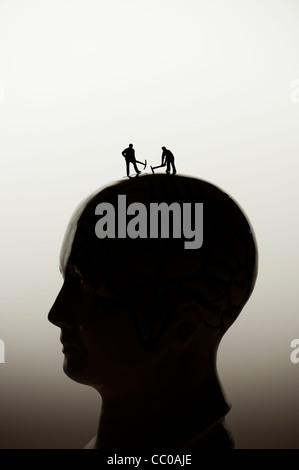 picking your brains, brain surgery, concept conceptual - small figures digging on a phrenology head - Stock Photo