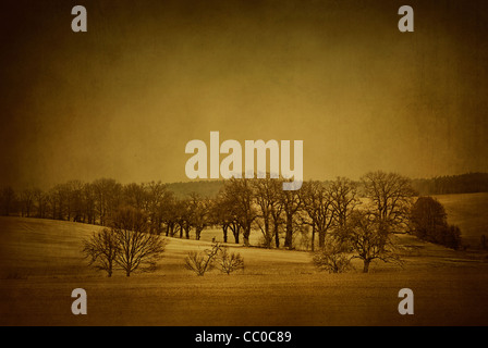 Moody snow scene in Oslo Norway - Stock Photo