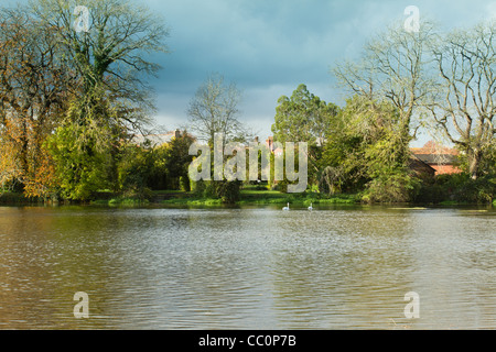 River scence at Fordingbridge, Hampshire on the River Avon near the New Forest - Stock Photo