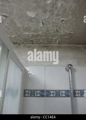 Flaking Paint On Damp Ceiling In House Home Stock Photo