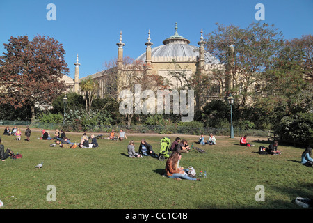 The dome of Brighton Museum & Art Gallery and the Royal Pavilion Gardens in Brighton, East Sussex, UK. - Stock Photo