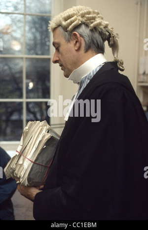 Barrister In Wig And Gown Male Stock Photo 41829970 Alamy