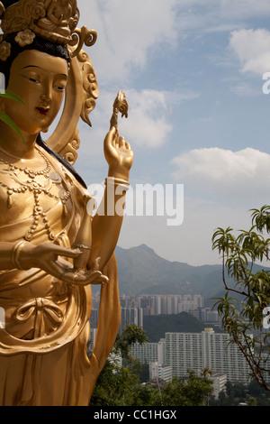 Golden statue of female Buddha with view  Hong Kong Ten Thousand Buddhas Monastery - Man Fat Tsz - Buddhist temple - Stock Photo