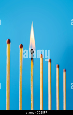A burning match in a row of unlit matches - Stock Photo
