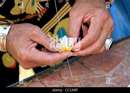 Closeup of local man stringing plumeria (frangipani) flowers to make a lei on Molokai, Hawaii, USA. - Stock Photo