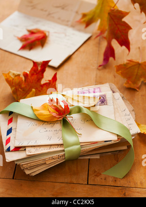 Autumn leaves on letters, studio shot - Stock Photo