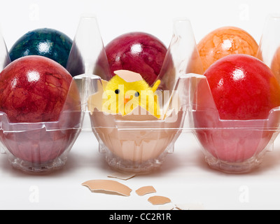 Colored hen's eggs in a plastic packing, between is a chick (toy) is in a broken eggshell - Stock Photo