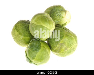 Fresh Healthy Raw Uncooked Brussel Sprouts Vegetables Against A White Background With No People And Copy Space - Stock Photo