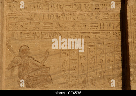 a description of hieroglyphic writing The rosetta stone contains text written in three languages, which made it possible to translate ancient egyptian hieroglyphics.