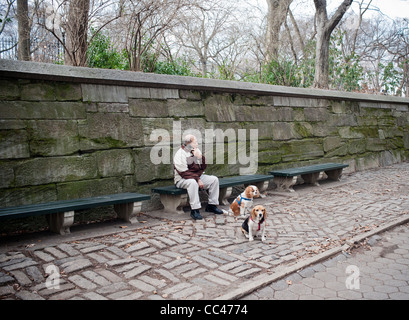 Man sits with dogs on Fifth Avenue outside of Central Park in New York on Saturday, January 7, 2012. (© Richard - Stock Photo