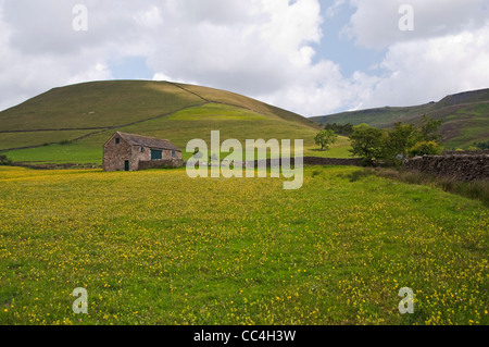 Meadow and Barn beneath Kinder Scout near Upper Booth in the Peak District National Park - Stock Photo