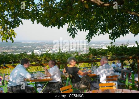 Österreich, Wien 19, Kahlenberg, Buschenschank (Heuriger) Sirbu - Stock Photo