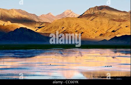 Pangong Tso at sunrise, Ngari, Tibet, China - Stock Photo