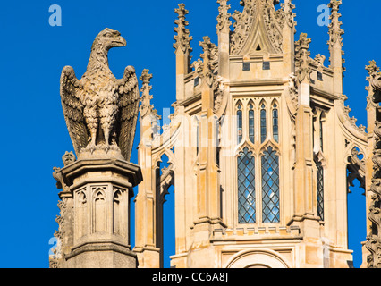 Close up detail with stone sculpture of an eagle on St Johns College, Cambridge University, England. - Stock Photo