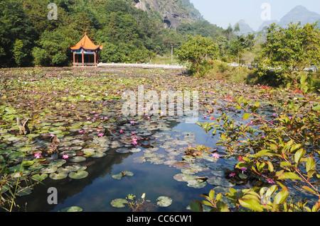 Yulin guangxi china