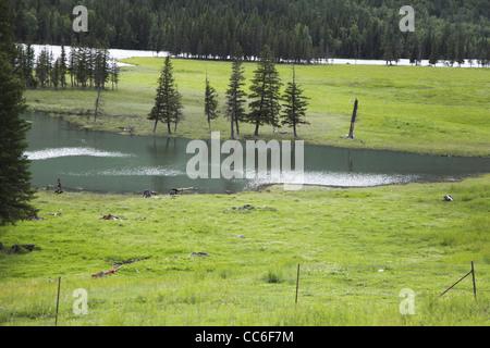 Kanas Lake, Altay Prefecture, Xinjiang, China - Stock Photo
