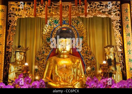 China, Hong Kong, Lantau, Interior of Po Lin Monastery, Buddha Statue - Stock Photo