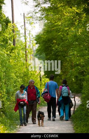 Österreich, Wien 22, Erholungsgebiet Lobau im Nationalpark Donau-Auen, Spaziergänger Stock Photo
