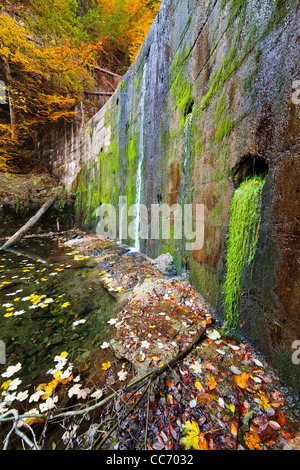 Landscape with a old wall with lichens and water flowing through it - Stock Photo