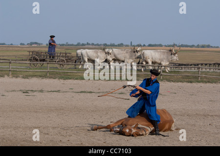 Hungary, Kalocsa. Traditional Hungarian horse show trick with roots dating back to Hungarian war time to avoid being - Stock Photo
