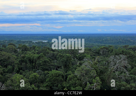 Primary Rain Forest viewed from the air with the Madre de Dios and Andes Mountains in background (Peru) - Stock Photo