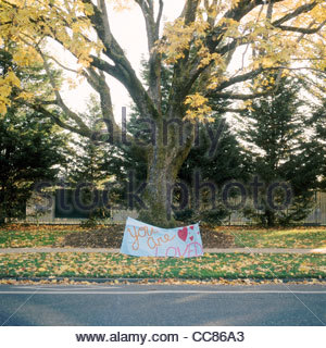 You Are Loved sign under a tree, St. Johns, Portland, Oregon, United States - Stock Photo