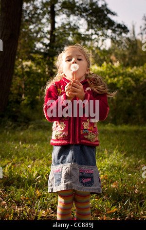 little girl in red jumper with dandelion - Stock Photo