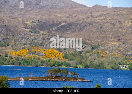Letterewe,Loch Maree, Islands,Wildest,Remote Area of Scotland,Estate,Wester Ross,North West Scotland - Stock Photo