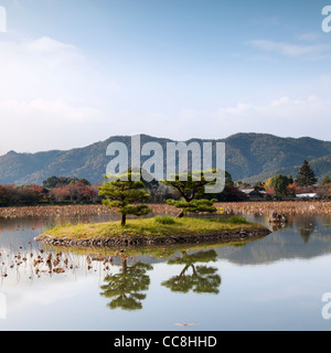Osawa Pond in the Daikaku-ji  temple complex in Sagano on the western outskirts of Kyoto.