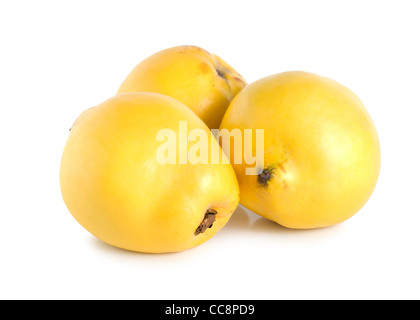 Three quinces isolated on a white background - Stock Photo