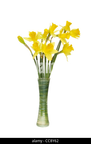 Bunch of daffodil flowers in a green vase isolated against white - Stock Photo