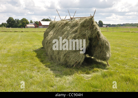 Traditional handmade hayrack on a field where hay is dried to become fodder for animals during the winter. - Stock Photo