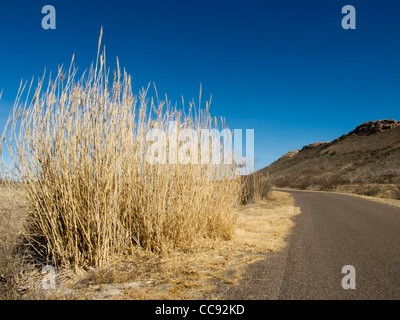 Country road near Marathon in West Texas, situated in the north tip of the Chihuahuan Desert. - Stock Photo