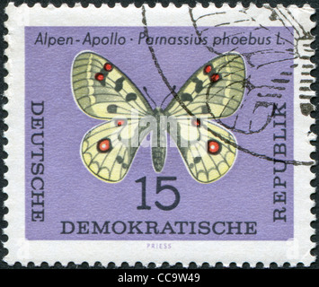 DDR - CIRCA 1964: A stamp printed in DDR, shows a butterfly Parnassius phoebus, circa 1964 - Stock Photo