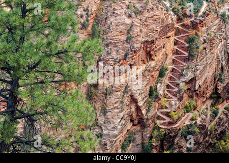 Switchbacks named Walter's Wiggles take hikers to Scout Lookout and the summit of Angels Landing in Utah's Zion - Stock Photo