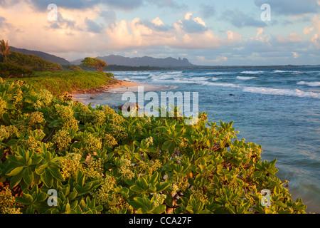 Nukoli'i Beach, also known as Kitchens Beach, Lihu'e, Kauai, Hawaii. - Stock Photo