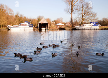 Scenic view in winter of the River Thames at Moulsford, Oxfordshire UK - Stock Photo