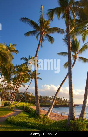 Ulua Beach, Wailea, Maui, Hawaii. - Stock Photo