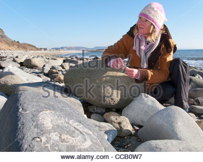 Woman looking at fossil in rock on ocean beach in winter - Stock Photo
