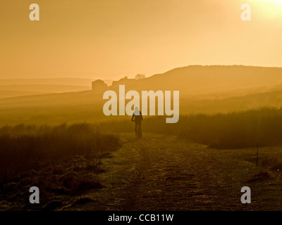 Mountain biker riding across moorland track on Axe Edge in late afternoon sun, Peak District National Park - Stock Photo