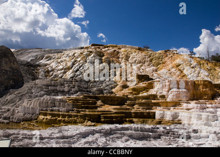 This is one of the terraces at Mammoth Hot Springs In Yellowstone - Stock Photo