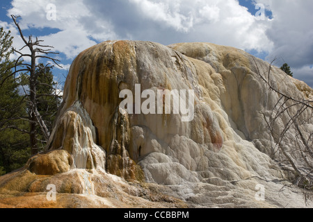 Angel Terrace found in Mammoth Hot Springs, Yellowstone National Park. USA - Stock Photo