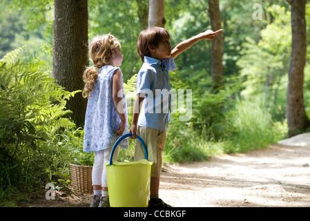 Children exploring woods together - Stock Photo