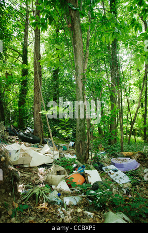 Garbage dumped in woods - Stock Photo