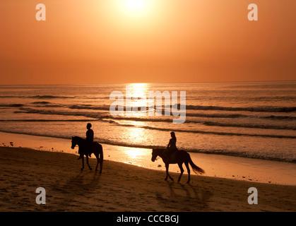 Horse Riding on Kololi Beach at Sunset, Near Serekunda, The Gambia, West Africa - Stock Photo
