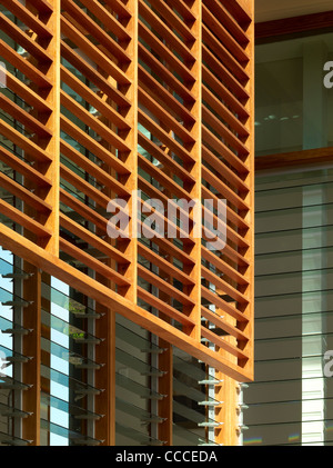 House in Manley, Sydney, Australia, by Assemblage - Peter Chivers Architect, detail of solar shade - Stock Photo