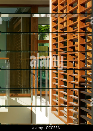 House in Manley, Sydney, Australia, by Assemblage - Peter Chivers Architect, detail, windows and sun screen - Stock Photo