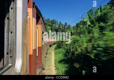Train Intercity Express Kandy-Colombo running in countryside, Sri Lanka - Stock Photo